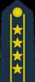 Colonel Commandant