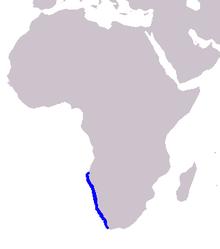 Cetacea range map Heaviside's Dolphin.PNG