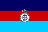 Joint Service Flag (UK).png