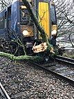 Tree blocking a railway line in England on the 9th of February.
