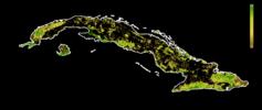 FLII Cuba.png