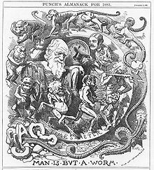 """Darwin's figure is shown seated, dressed in a toga, in a circular frame labelled """"TIME'S METER"""" around which a succession of figures spiral, starting with an earthworm emerging from the broken letters """"CHAOS"""" then worms with head and limbs, followed by monkeys, apes, primitive men, a loin cloth clad hunter with a club, and a gentleman who tips his top hat to Darwin."""