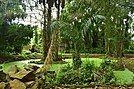 Jardin des plantees et de la nature de Porto Novo 09.jpg