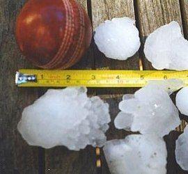 1999 Sydney hailstorm stones.jpg