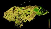 FLII Honduras.png