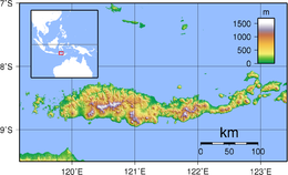 Flores Topography.png