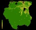 FLII Suriname.png