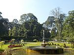 The Fountain at The Center of Sudjana Kassan Garden at Bogor Botanical Garden.jpg