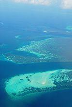 Flickr - JennyHuang - Wakatobi Reef Atoll.jpg
