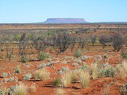 View across sand plains and salt pans to Mount Conner, Central Australia