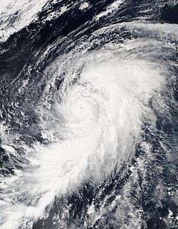 爆发增强的超强台风鹦鹉