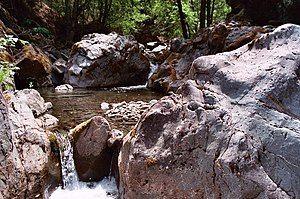Rattlesnake creek.jpg