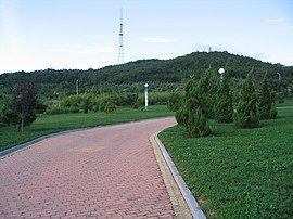 山东省文登市区空气质量指数在23的峰山公园 人类健康需要多栽树少栽花 - panoramio.jpg