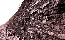 Cliff wall with layers of rock next to a rocky beach
