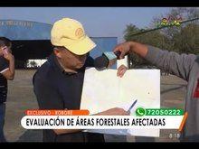File:Bolivia y Paraguay acuerdan realizar trabajo conjunto para mitigar el fuego en la Amazonía.webm
