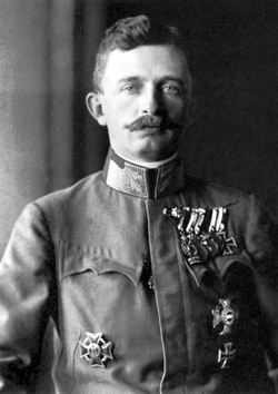 Emperor karl of austria-hungary 1917.png
