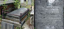 A granite, horizontal gravestone fenced by metal railings, among other graves in a cemetery