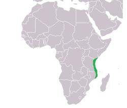 Location of Kilwa