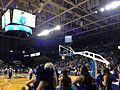 Alumni Arena UB.jpg