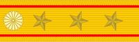Shoulder insignia
