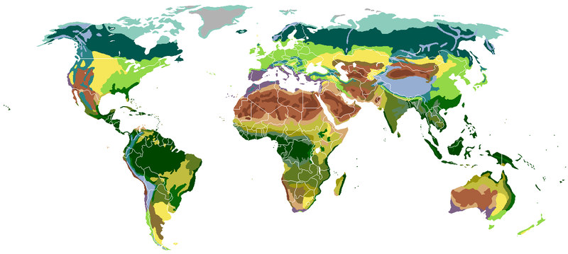按植被分类的陆地生物群系