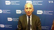 File:Infectious Disease Expert Discusses Coronavirus Threat with VOA.webm