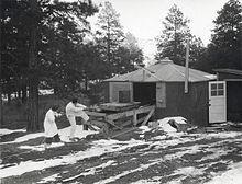 松树林中有一间小平房,地表上有积雪。身着白大褂的一男一女正拉着绳子,绳子另一端系在一辆小木车上。小木车上有一个圆柱形物体。