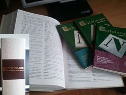 Open dictionary and smaller books, with title on spine in an inset