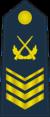 PLAAF-0709-1CSGT.png