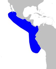 Cetacea range map Pygmy Beaked Whale.png