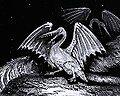 Pterosaur portrayed as spawn of Satan