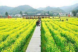 广州最美乡村—红山村 - panoramio (48).jpg