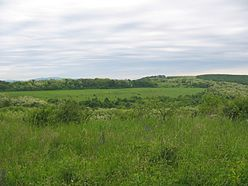 Ibafa, landscape, hungary, 2006.jpg