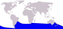Cetacea range map Arnoux 27s Beaked Whale.png