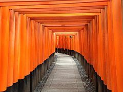 Sembon-Torii in Fushimi Inari Grand Shrine 15.JPG