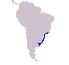 Cetacea range map La Plata River Dolphin.PNG