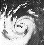 Typhoon Babe.JPG