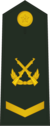 PLAGF-0704-SGT.png