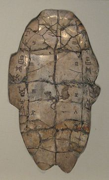 An off-white, ovular turtle shell with an inscription in ancient Chinese