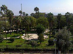 Garden center of Baraki