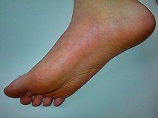Human male foot.jpg