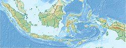 2021年東爪哇地震在印度尼西亞的位置