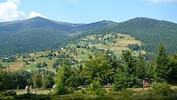 Apuseni Mountains near Arieșeni, Alba County
