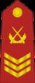 CAPF-0708-2CSGT.png