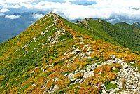 View from Mt.Kimpu 04.jpg