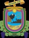 伊卡大区官方图章