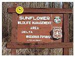 德尔塔国家森林向日葵野生管理区的标志