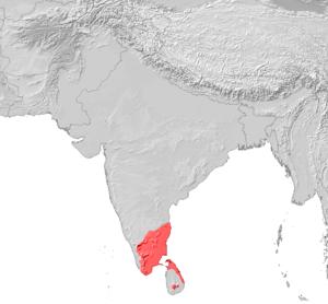Tamil Verbreitung.png
