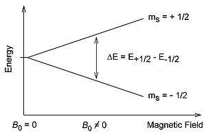 电子能级分裂