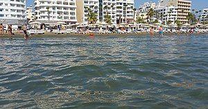 Finikoudes Beach, Larnaca.jpg